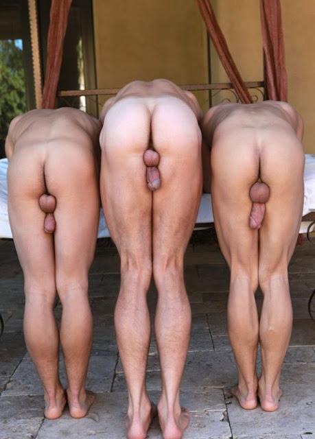 3-culs-passifs